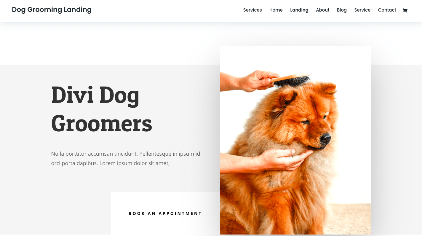 Dog Grooming Website Design